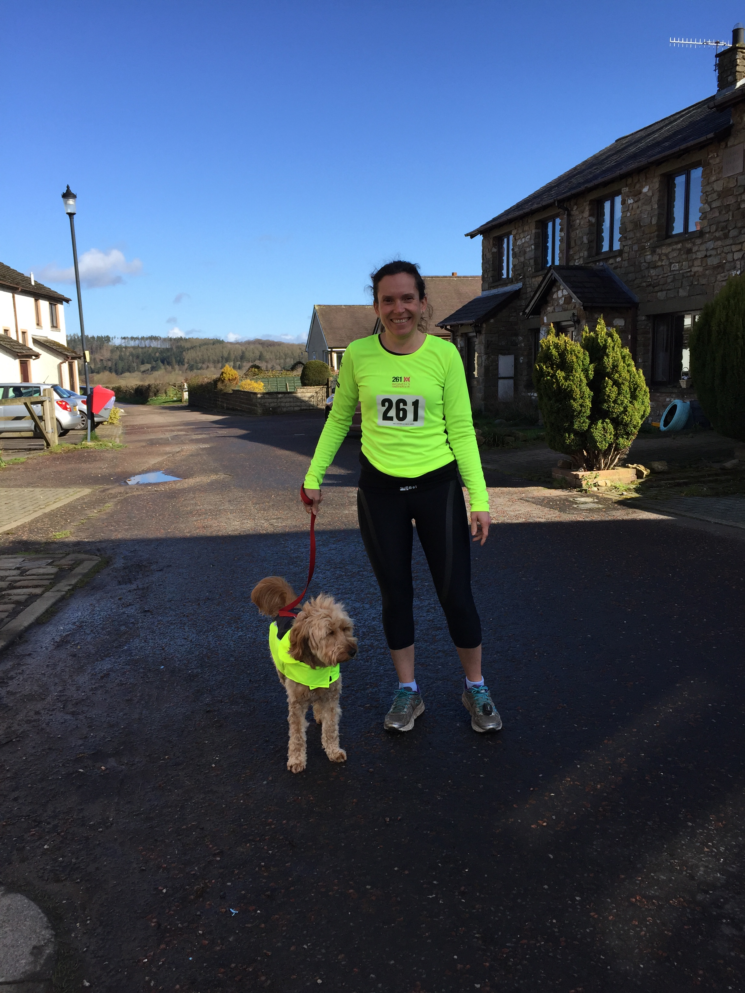 running with dog in high vis