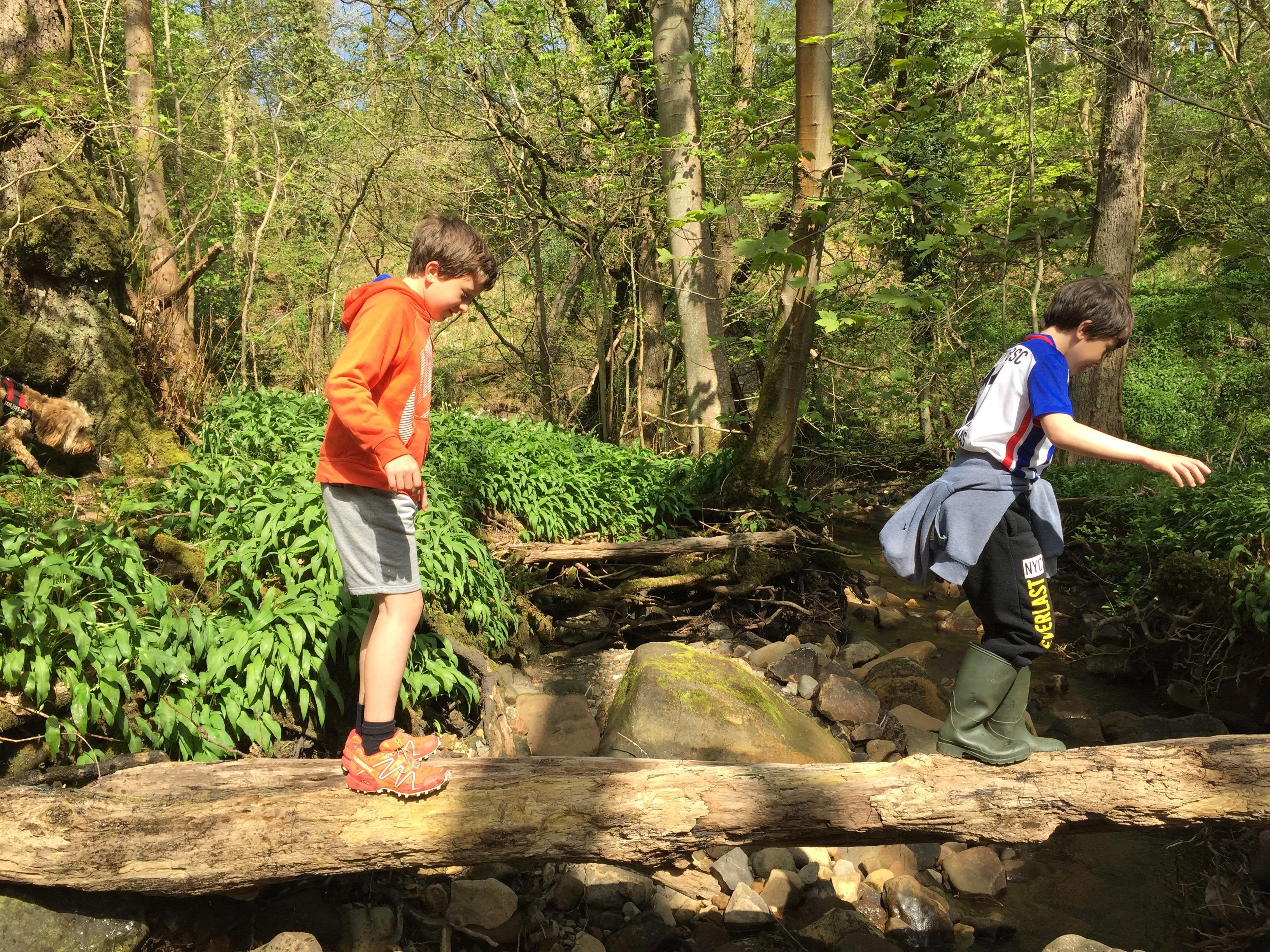 boys balancing on log