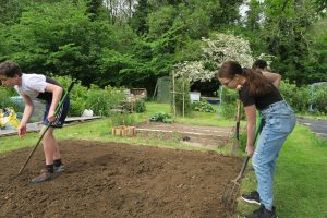Project Allotment